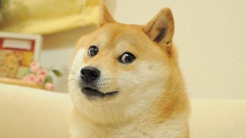 20180108doge-dogecoin-kriptovaluta