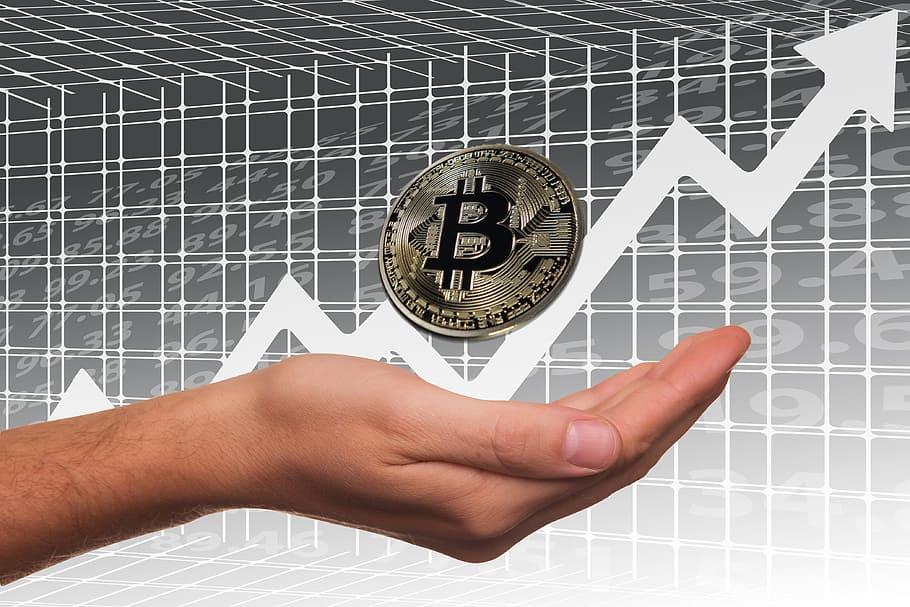 bitcoin-stock-exchange-profit-share