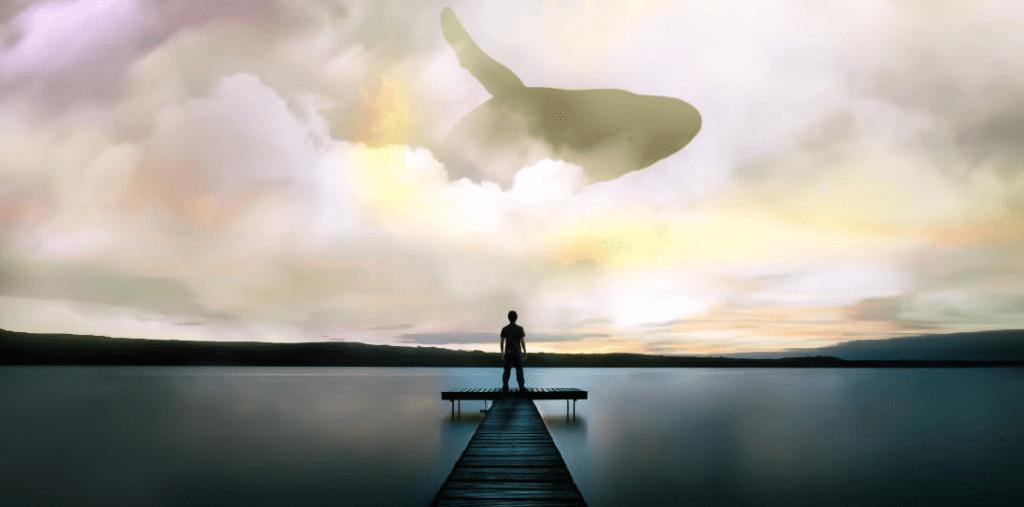 Whale horizon