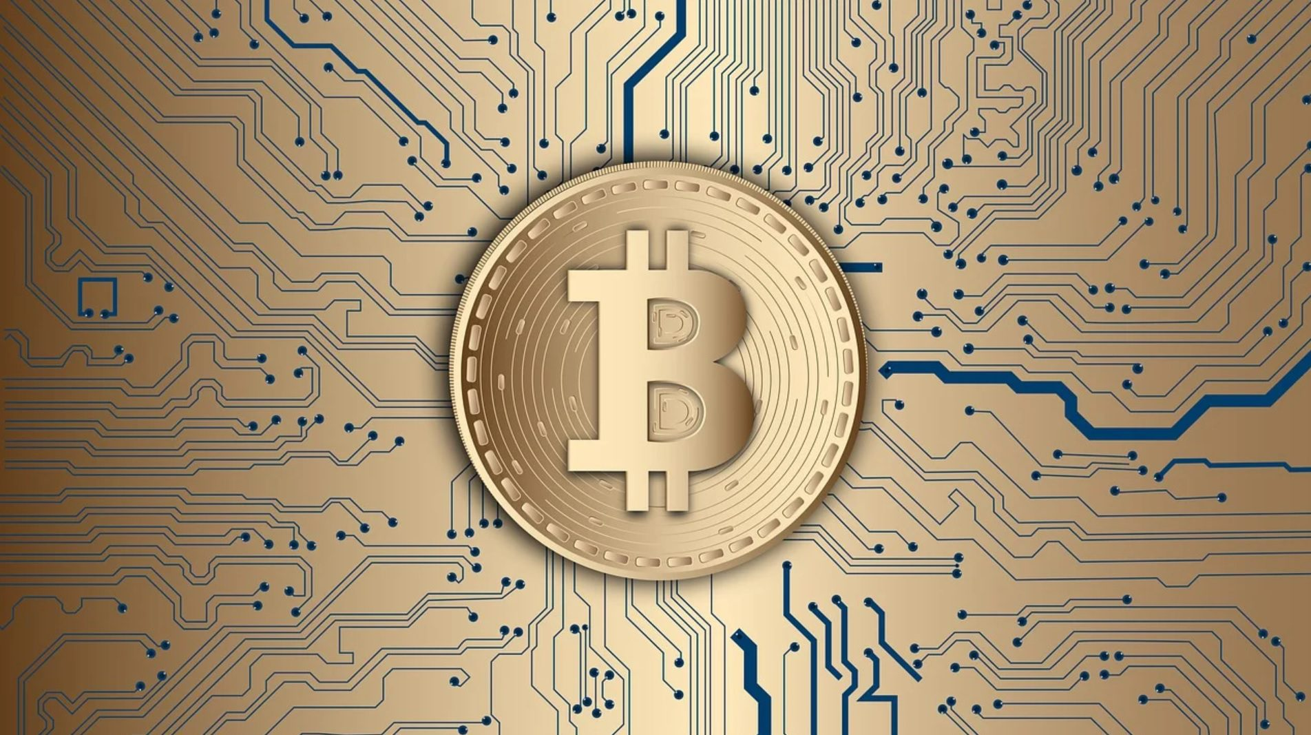 bitcoin price and coin