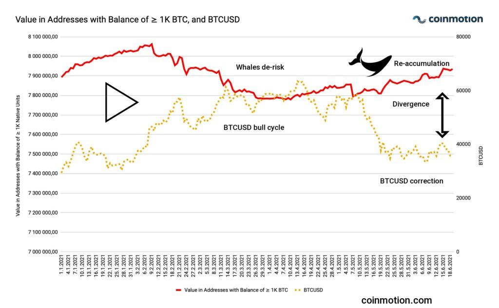 bitcoin-whales-accumulating-btc-technical-analysis-coinmotion